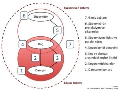 7_Eyed_Model_Supervision_TR_Evolve